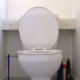 A fat girl sits down on a toilet and pisses for a long time. She farts and takes a semi-soft sounding shit with some decent plops. Great audio, but no product or face is shown in this clip. Presented in 720P HD. About 5 minutes.